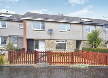 Thumbnail 3 bed terraced house to rent in North Carr View, Kingsbarns, St. Andrews