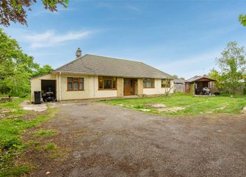 Thumbnail 4 bed detached bungalow for sale in Charlton Lane, Bristol