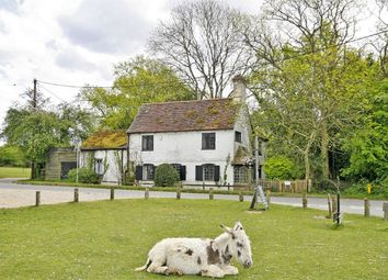 Thumbnail 4 bed cottage for sale in Godshill, Fordingbridge
