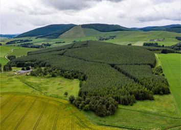Thumbnail Land for sale in Risquehouse Forest, Huntly, Aberdeenshire