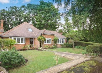 Thumbnail 3 bed detached bungalow for sale in Allen Road, Bookham, Leatherhead