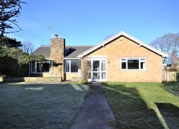 Thumbnail 3 bed bungalow to rent in Springfield Road, Upper Poppleton, York