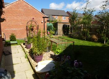 Thumbnail 4 bed detached house for sale in Holywell Fields, Hinckley