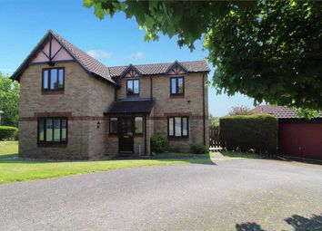 Thumbnail 4 bed detached house for sale in Wilding Road, Ipswich
