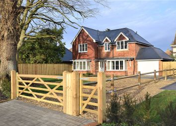Thumbnail 4 bed country house for sale in Farmers Walk, Everton, Lymington, Hampshire