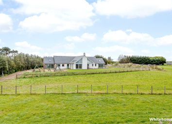 Thumbnail 4 bedroom detached house for sale in Lower Arboll, Portmahomack, Tain, Ross-Shire