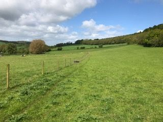 Thumbnail Land for sale in Newland, Coleford, Gloucestershire