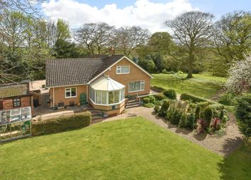 Thumbnail 5 bed equestrian property for sale in The Old Vicarage, Skendleby, Spilsby