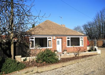 Thumbnail 2 bed bungalow to rent in Dereham Road, Norwich