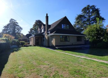Thumbnail 4 bed bungalow for sale in Guildford Road, Bookham, Leatherhead