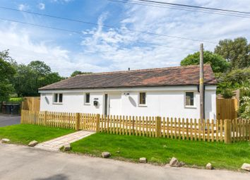 Thumbnail 2 bed detached bungalow for sale in North Street, Hellingly, Hailsham