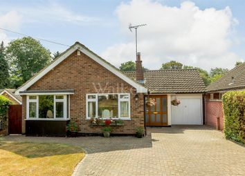 Thumbnail 3 bed detached bungalow for sale in The Paddocks, Ingatestone