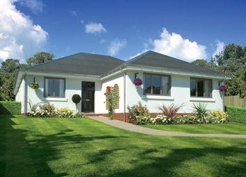 Thumbnail 3 bed detached bungalow for sale in Burbidge Close, Lytchett Matravers, Poole