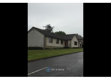 Thumbnail 4 bed bungalow to rent in Bogend Road, Bannockburn