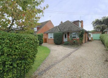Thumbnail 3 bed bungalow for sale in Park Avenue, Old Basing, Basingstoke