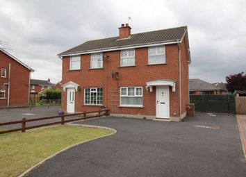 Thumbnail 3 bedroom semi-detached house to rent in Ashbury Avenue, Bangor
