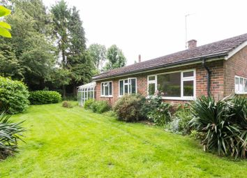 Thumbnail 3 bed detached bungalow for sale in Stone Street, Stanford, Ashford