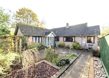 Thumbnail 4 bed detached bungalow for sale in Ingrams Well Road, Sudbury