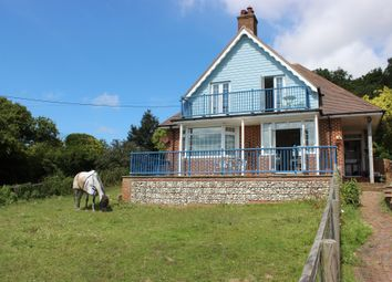 Thumbnail 3 bed detached house for sale in Palmerston Road, Newhaven