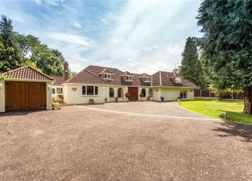 Thumbnail 4 bed detached house for sale in Willow Tree Farm, Pipers Lane, Markyate, St. Albans, Hertfordshire