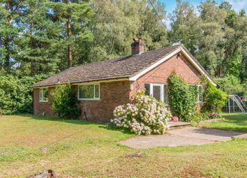 Thumbnail 3 bed bungalow to rent in Shelley Lane, Ower, Romsey