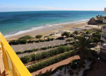 Thumbnail Studio for sale in 03191 Mil Palmeras, Alicante, Spain