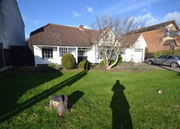 Thumbnail 3 bed detached bungalow for sale in Branksome Avenue, Stanford-Le-Hope