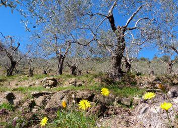 Thumbnail Land for sale in Località Arcagna - Da 140, Dolceacqua, Imperia, Liguria, Italy