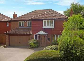 Thumbnail 6 bed detached house to rent in Portland Terrace, Hale Road, Farnham