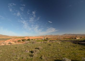 Thumbnail Land for sale in San Roque 45, Valles De Ortega, Fuerteventura, Canary Islands, Spain