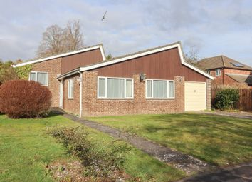 3 bed detached bungalow for sale in Tichborne Down, Alresford SO24