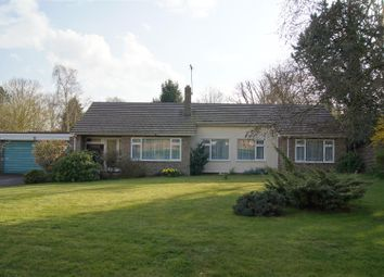 Thumbnail 4 bedroom bungalow for sale in Anglesey Place, Great Barton, Bury St. Edmunds