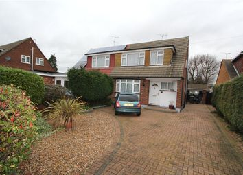 Thumbnail 3 bed semi-detached house to rent in Mapledene Avenue, Hockley, Essex