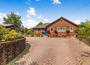 Thumbnail 4 bed bungalow for sale in Bishops Lane, Robertsbridge, East Sussex