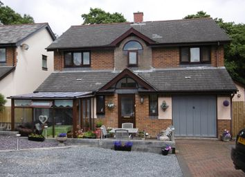 Thumbnail 4 bed detached house for sale in Nant Arw, Capel Hendre, Ammanford, Carmarthenshire.