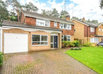 Thumbnail 4 bed detached house to rent in Heathpark Drive, Windlesham, Surrey