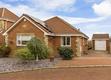 Thumbnail 3 bed bungalow for sale in Glenisla Court, Whitburn, Bathgate