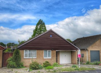 Thumbnail 3 bedroom detached bungalow to rent in Acacia Grove, Haxby, York