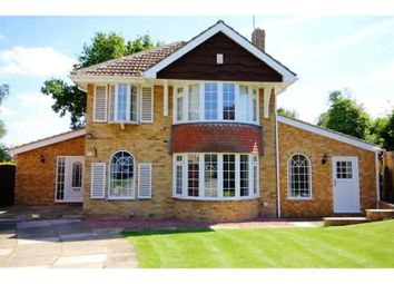 Thumbnail 6 bed detached house for sale in The Manor Beeches, York