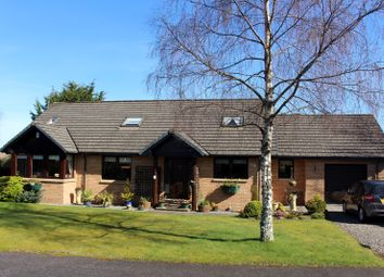 Thumbnail 5 bed detached house for sale in Mare Park, Muirton, Auchterarder