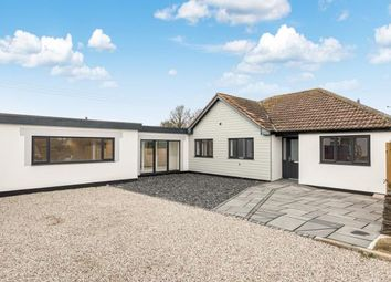 Thumbnail 5 bed bungalow for sale in St. Merryn, Padstow, Cornwall