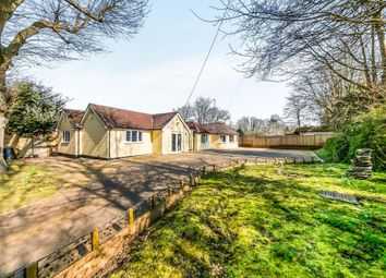 Thumbnail 5 bed detached bungalow for sale in Beacon Road, Ditchling, Hassocks