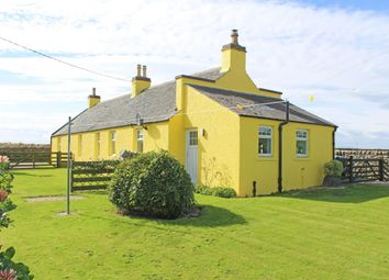 Thumbnail 3 bed cottage to rent in Navity, Cromarty