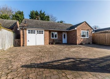 Thumbnail 3 bed detached bungalow for sale in Lotfield Street, Orwell, Cambridge