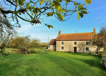 Thumbnail 5 bed cottage for sale in Primrose Farm, Hunger Hill, East Stour, Dorset