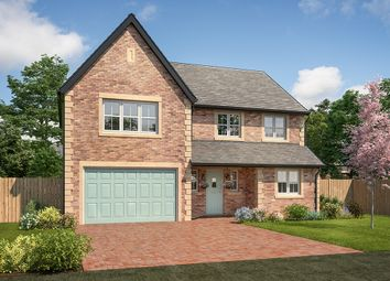 "Thumbnail 5 bed detached house for sale in ""Mayfair"" at Station Road, Longhoughton, Alnwick"
