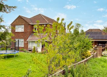 Thumbnail 6 bed detached house for sale in Main Road, Terrington St. John, Wisbech