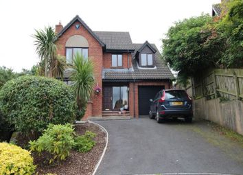 Thumbnail 4 bed detached house to rent in Curlew Crescent, Portaferry Road, Newtownards