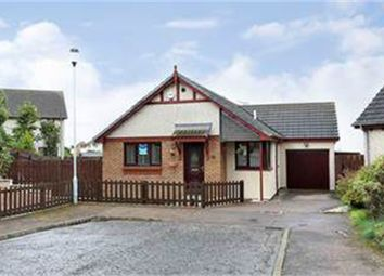 Thumbnail 3 bedroom detached bungalow for sale in Cove Place, Cove, Aberdeen