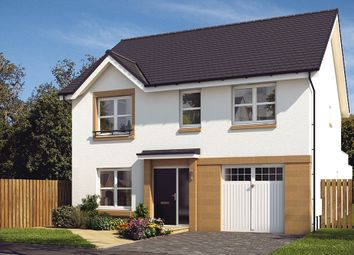 "Thumbnail 4 bed detached house for sale in ""The Rosebury"" at Castlehill Crescent, Ferniegair, Hamilton"